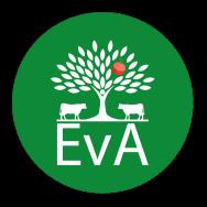 Entwicklung von Agroforstsystemen